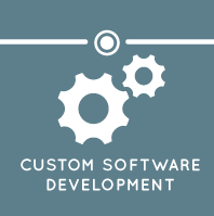 Custome Software Development